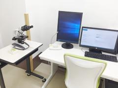 顕微鏡画像